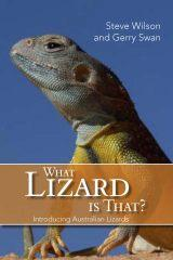 what lizard is that.