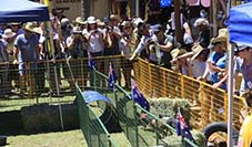 Nindigully Pub Pig Races