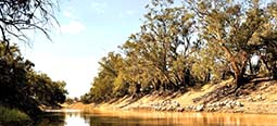 tolarno station darling river camping